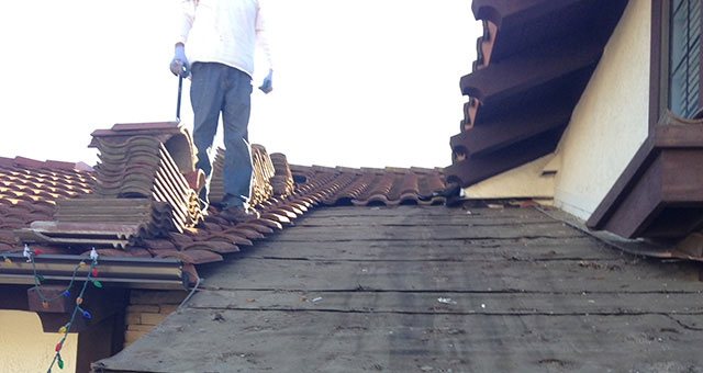 Home and Business Roof Inspection Contractor